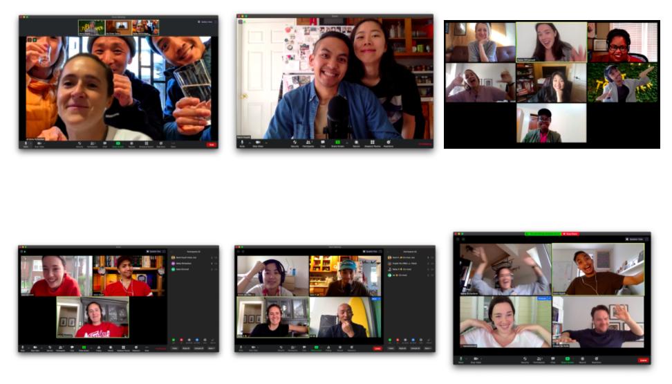 Screenshots from Zoom meetings